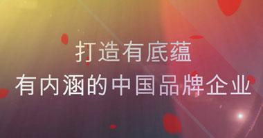 打造有底蕴有内涵的中国品牌企业